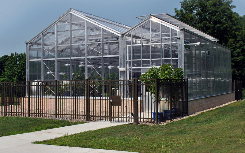 Exterior of the biofuels research greenhouse