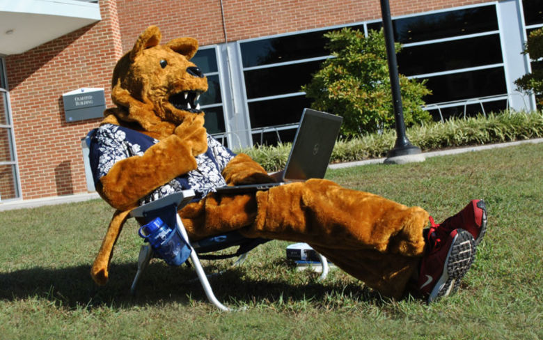 Nittany Lion reclining and using laptop