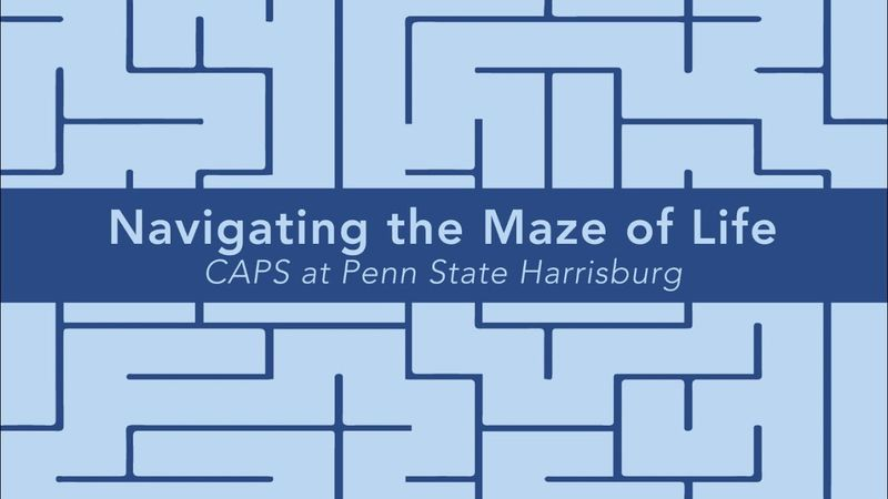 Navigating the Maze of Life