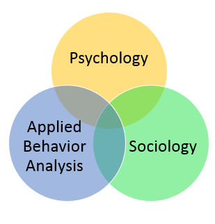 Venn diagram. relationships: behavioral studies, sociology, psychology