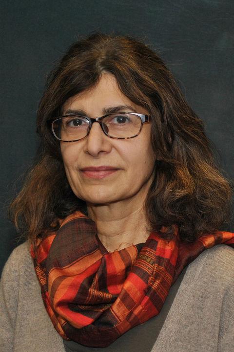 Persheng Sadegh-Vaziri, Ph.D.
