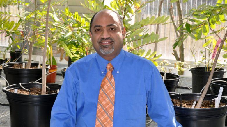 Dr. Sairam Rudrabhatla
